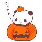 かぼちゃランタンとハロウィンパンダフリーイラスト