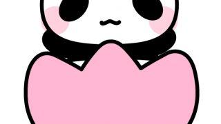 パンダとチューリップのフリーイラスト