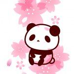 桜とパンダのフリーイラスト