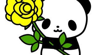 黄色のバラの花を持ったパンダのフリーイラスト
