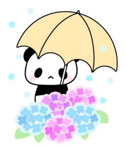 パンダとあじさい