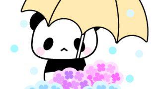 傘を持ったパンダとアジサイのフリーイラスト