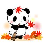 もみじとパンダと落ち葉掃除のフリーイラスト