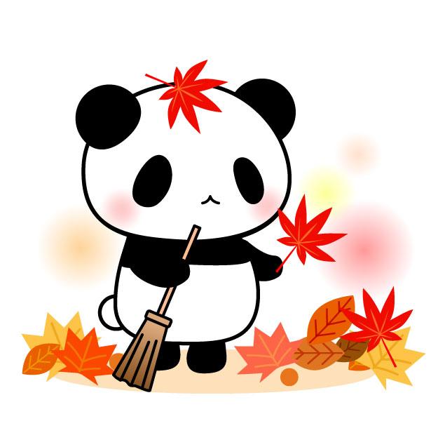 もみじとパンダと落ち葉掃除のフリーイラスト パンダ 動物かわいい