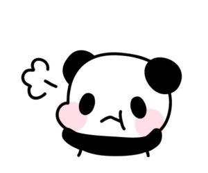 怒っているパンダ