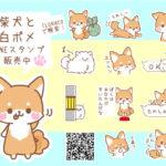 柴犬と白ポメLINEスタンプ発売🐾